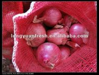 China Export Fresh Onion