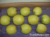 Fresh Su Pears
