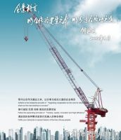 Luffing Tower Crane (D-160)