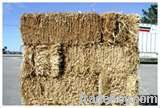 Wheat Straw Hay