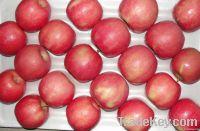 Fresh Pink Apple