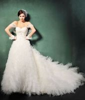 Wedding Dress (Elegant Chapel Tr...