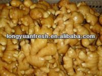 Fresh Chinese Thin Ginger For Sale