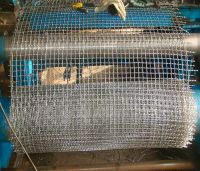 Hot-dipped Galvanized Crimped Wire Mesh