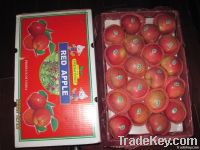 Qinguan Apple