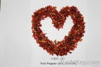 Hot Red Bell Pepper
