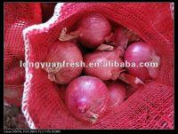 Mesh Bag For Onion