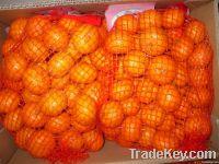 Nanfeng Mandarine