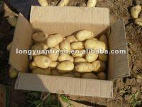 China Organic Potato