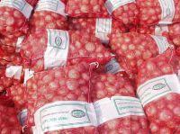 Onions Fresh 25kg Mesh Bag