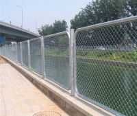 Galvanized Chain Link Fence (competitive Price&best Quality)
