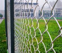 Chain Link Fence / Pvc Coated Chain Link Fence